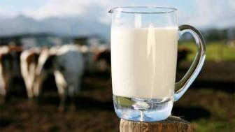 Sütün Bozulduğunu Nasıl Anlarız?