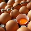 Yumurta Kokusu Nasıl Çıkar?
