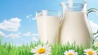 Pastörize Süt Nasıl Saklanır?