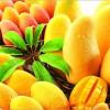 Mango Nasıl Saklanır?