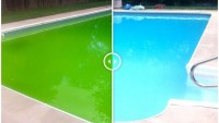 Havuz Temizliği Nasıl Yapılır?