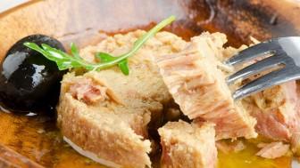 Ton Balığı Hangi Balıktan Yapılır?
