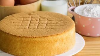 Luxell Börekçi Fırında Kek Kaç Derecede Pişer?