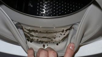Çamaşır Makinesi Lastiği Nasıl Temizlenir?